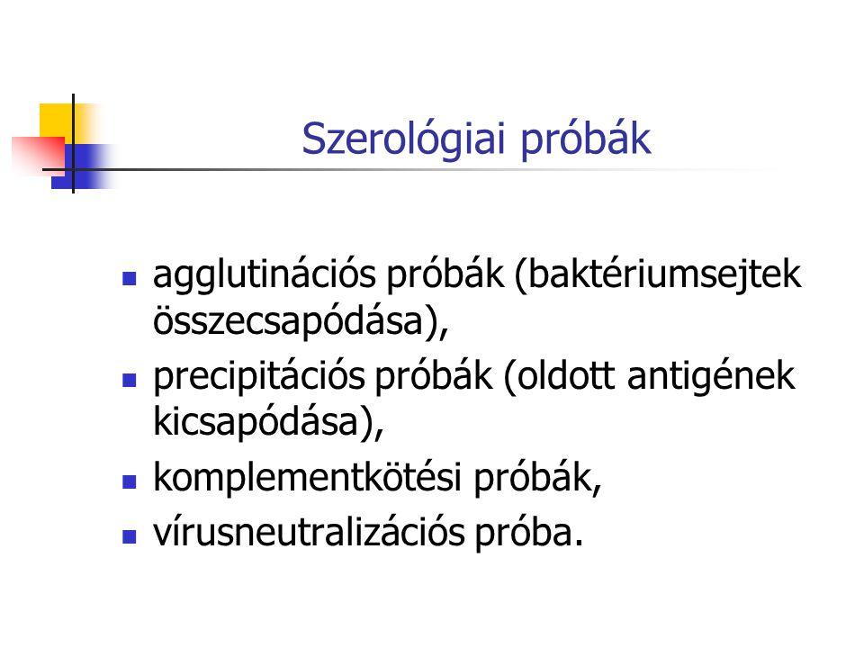 Szerológiai próbák agglutinációs próbák (baktériumsejtek összecsapódása), precipitációs próbák (oldott antigének kicsapódása),