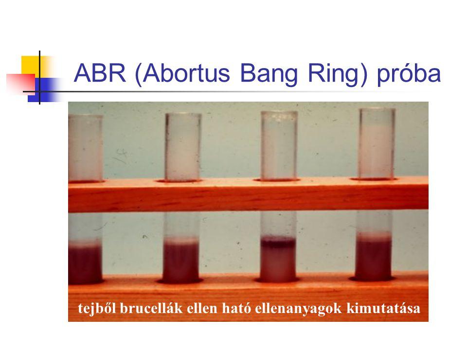 ABR (Abortus Bang Ring) próba