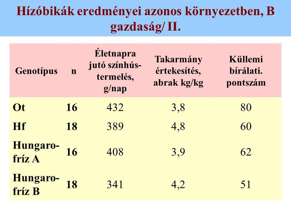 Hízóbikák eredményei azonos környezetben, B gazdaság/ II.