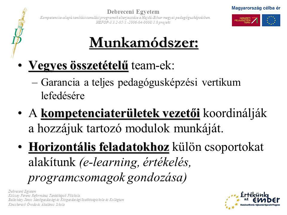 Munkamódszer: Vegyes összetételű team-ek: