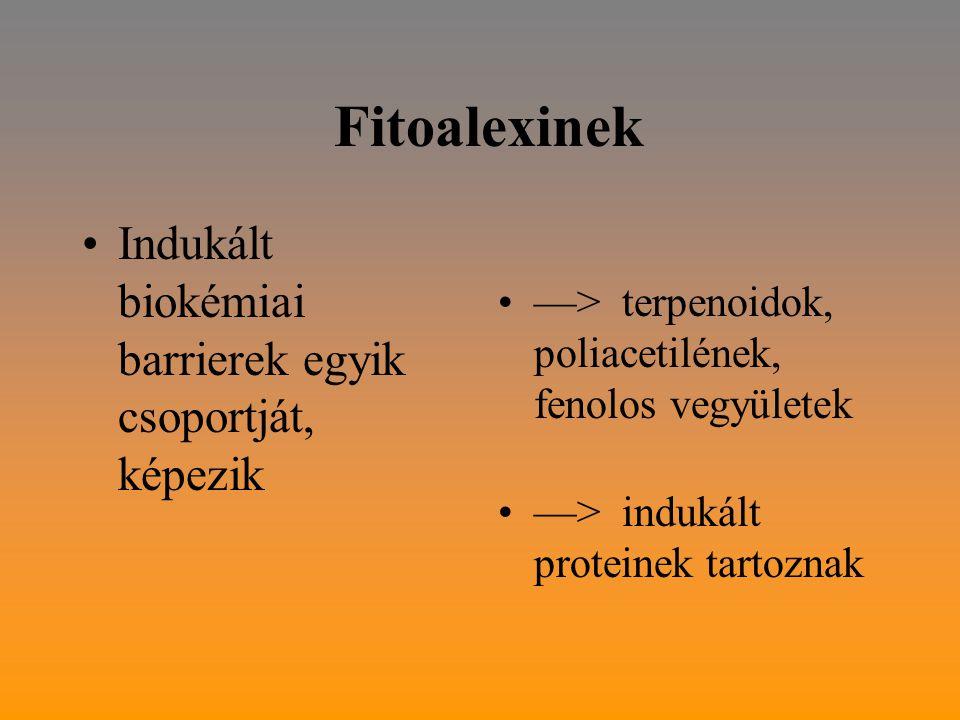 Fitoalexinek Indukált biokémiai barrierek egyik csoportját, képezik