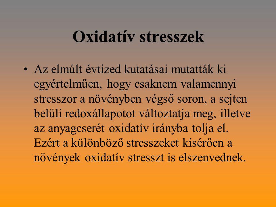 Oxidatív stresszek