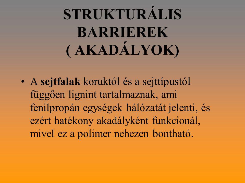 STRUKTURÁLIS BARRIEREK ( AKADÁLYOK)
