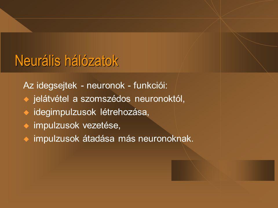 Neurális hálózatok Az idegsejtek - neuronok - funkciói: