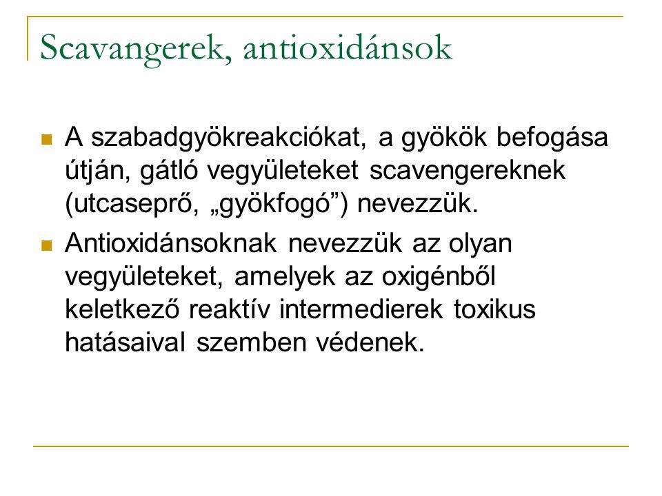 Scavangerek, antioxidánsok