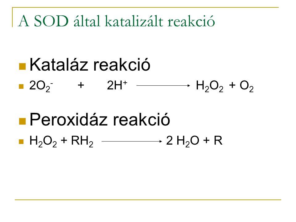 A SOD által katalizált reakció