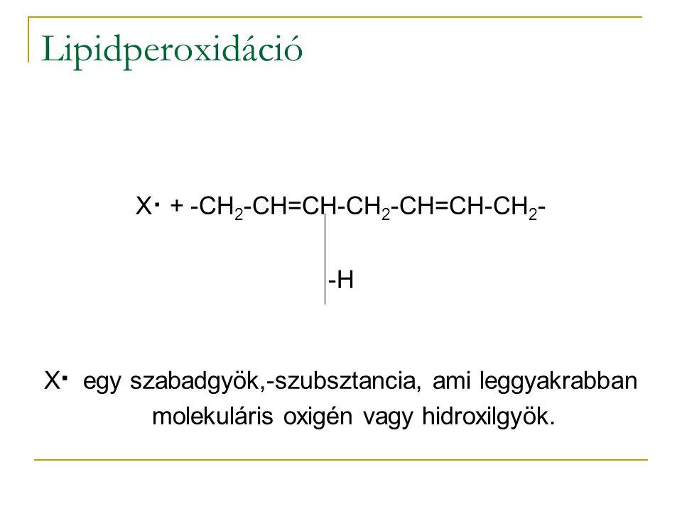 X. + -CH2-CH=CH-CH2-CH=CH-CH2-