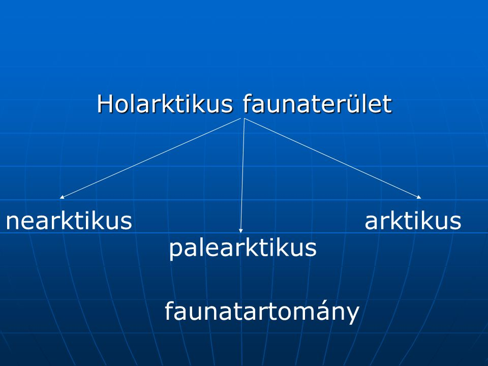 Holarktikus faunaterület