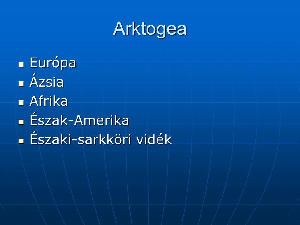 Arktogea Európa Ázsia Afrika Észak-Amerika Északi-sarkköri vidék