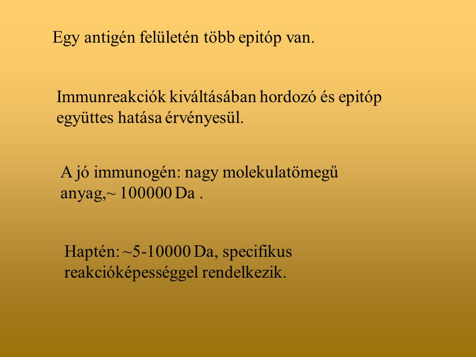 Egy antigén felületén több epitóp van.