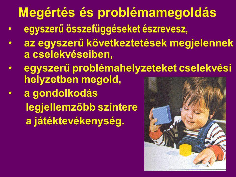 Megértés és problémamegoldás