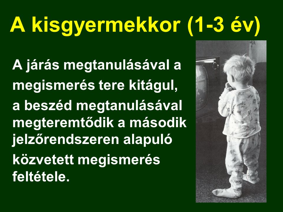 A kisgyermekkor (1-3 év) A járás megtanulásával a