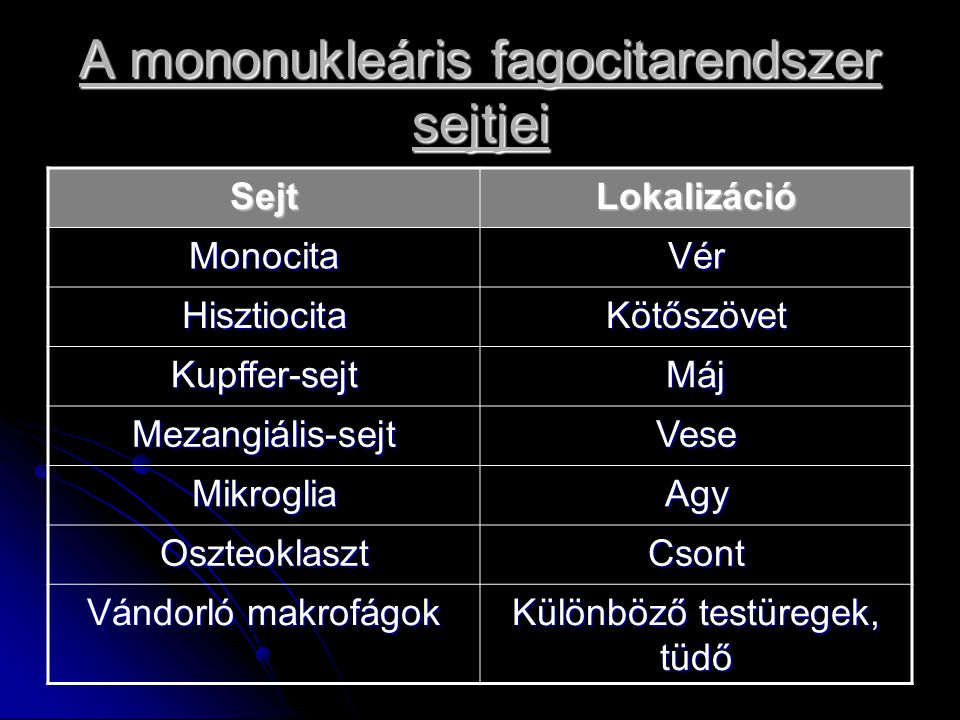 A mononukleáris fagocitarendszer sejtjei