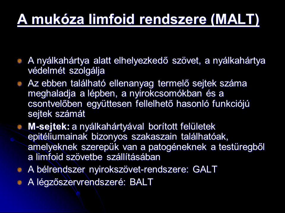 A mukóza limfoid rendszere (MALT)