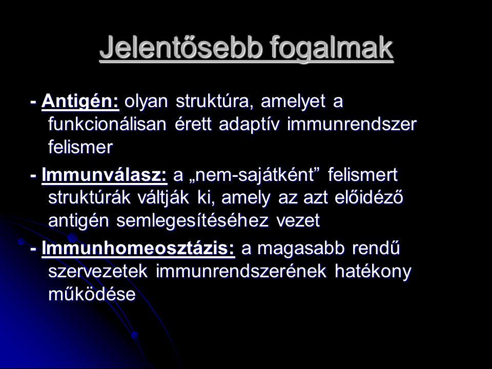 Jelentősebb fogalmak - Antigén: olyan struktúra, amelyet a funkcionálisan érett adaptív immunrendszer felismer.