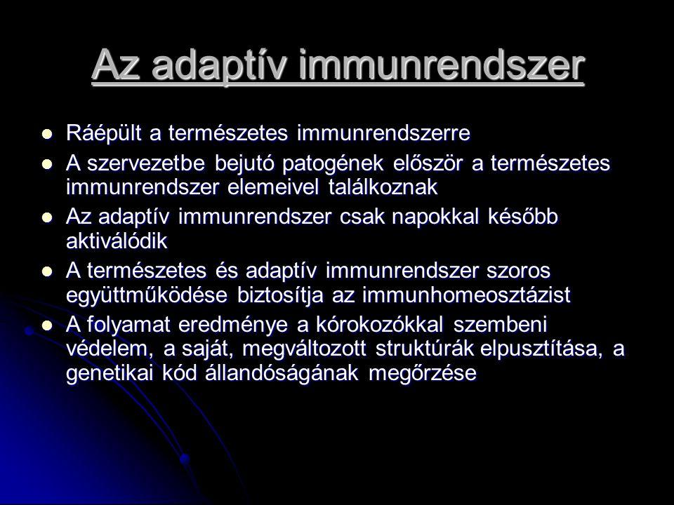 Az adaptív immunrendszer