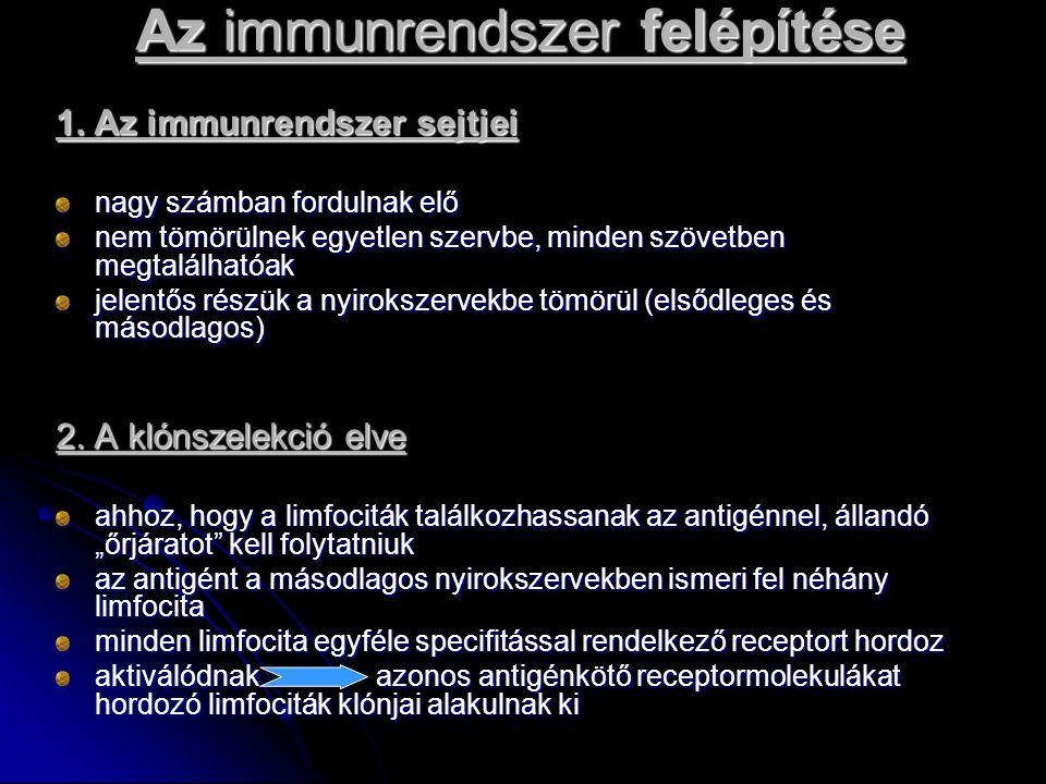 Az immunrendszer felépítése