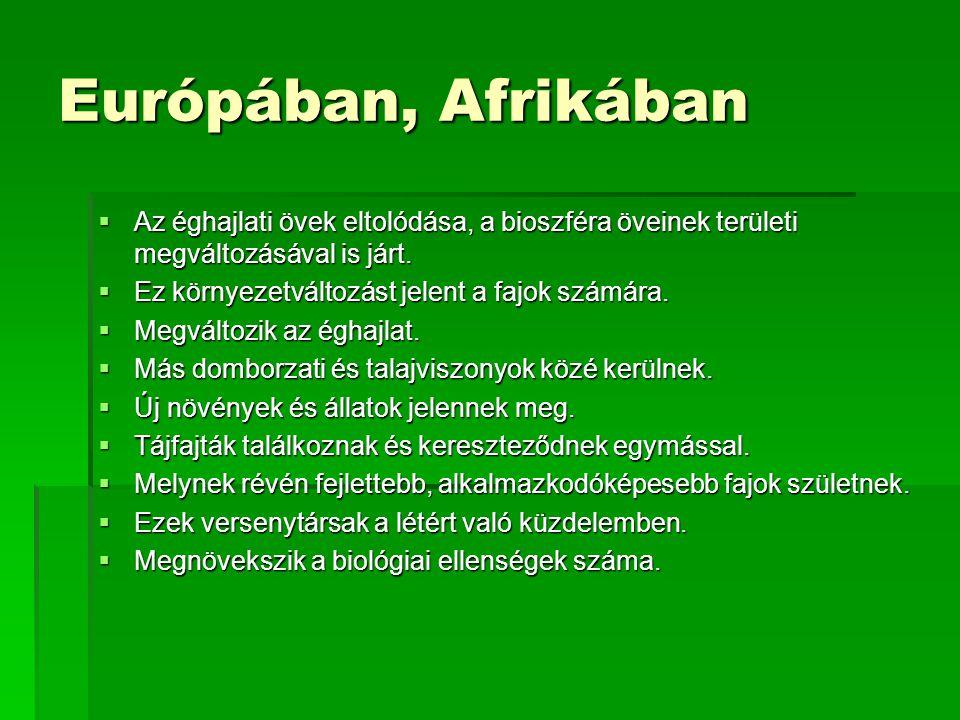 Európában, Afrikában Az éghajlati övek eltolódása, a bioszféra öveinek területi megváltozásával is járt.