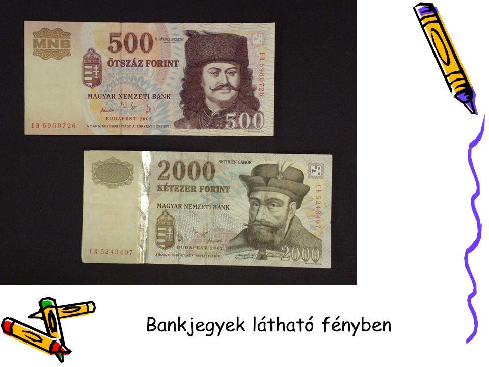 Bankjegyek látható fényben