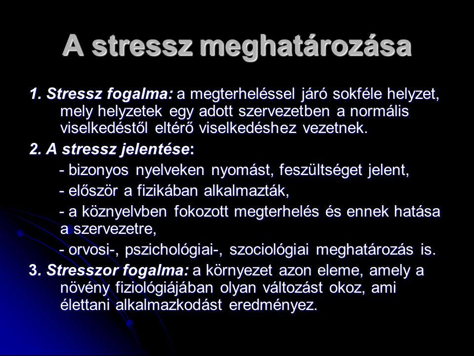 A stressz meghatározása