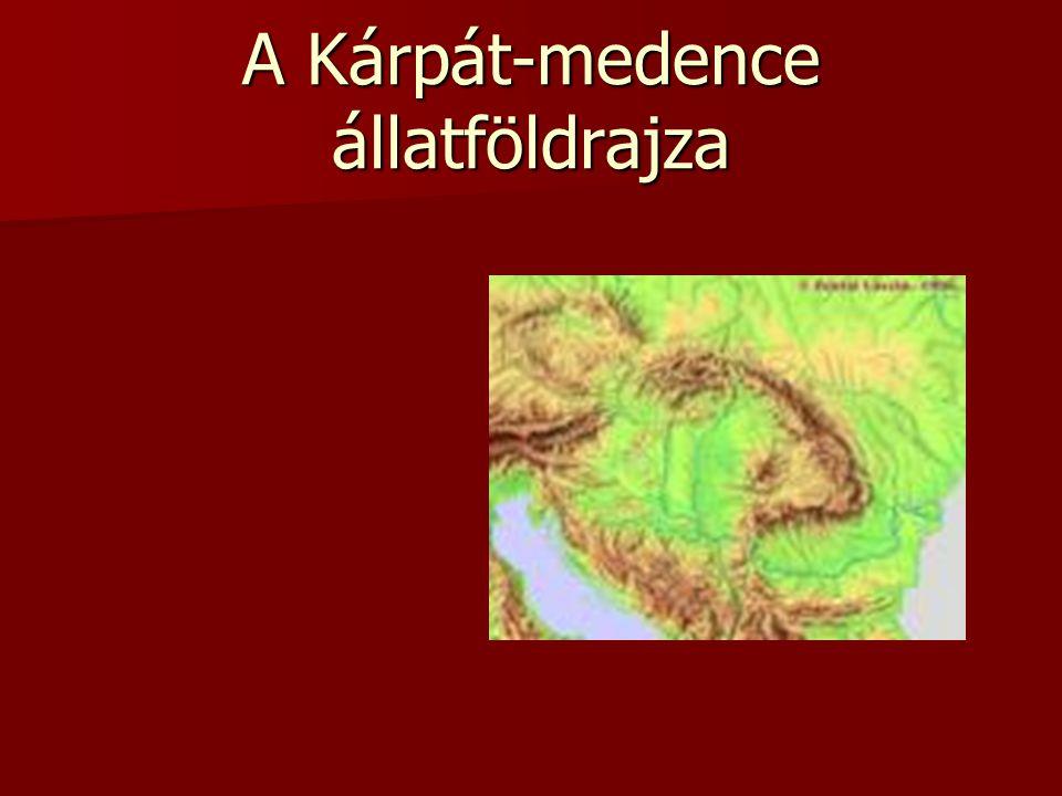 A Kárpát-medence állatföldrajza
