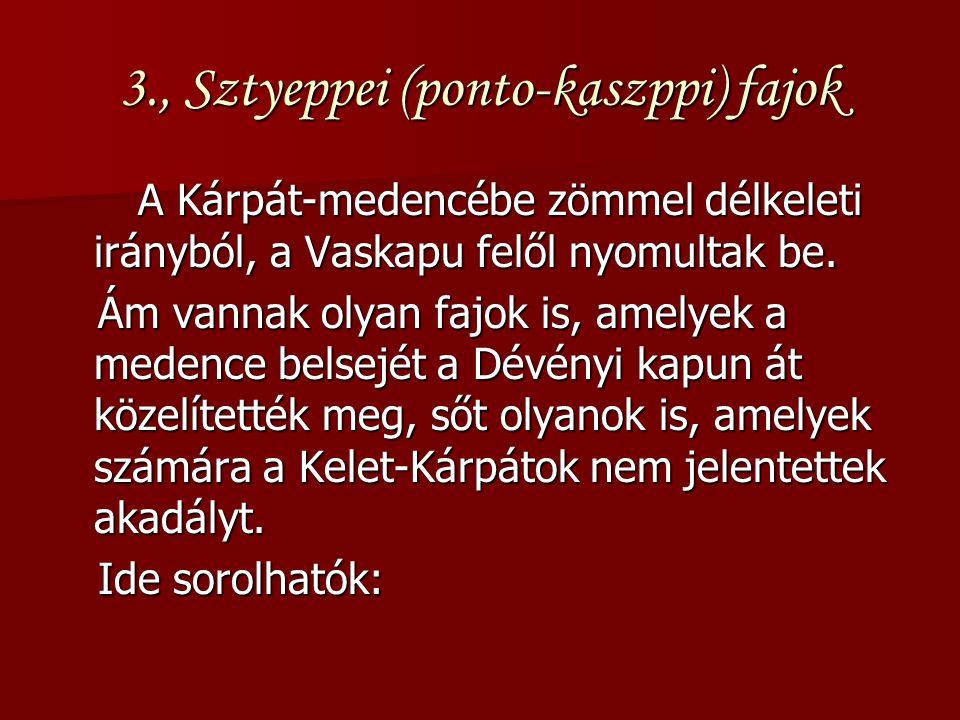 3., Sztyeppei (ponto-kaszppi) fajok