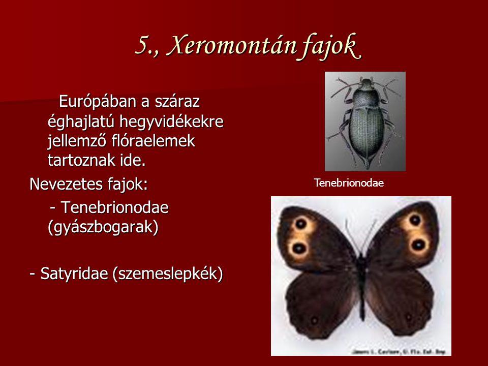 5., Xeromontán fajok Európában a száraz éghajlatú hegyvidékekre jellemző flóraelemek tartoznak ide.