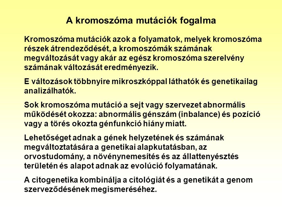 A kromoszóma mutációk fogalma