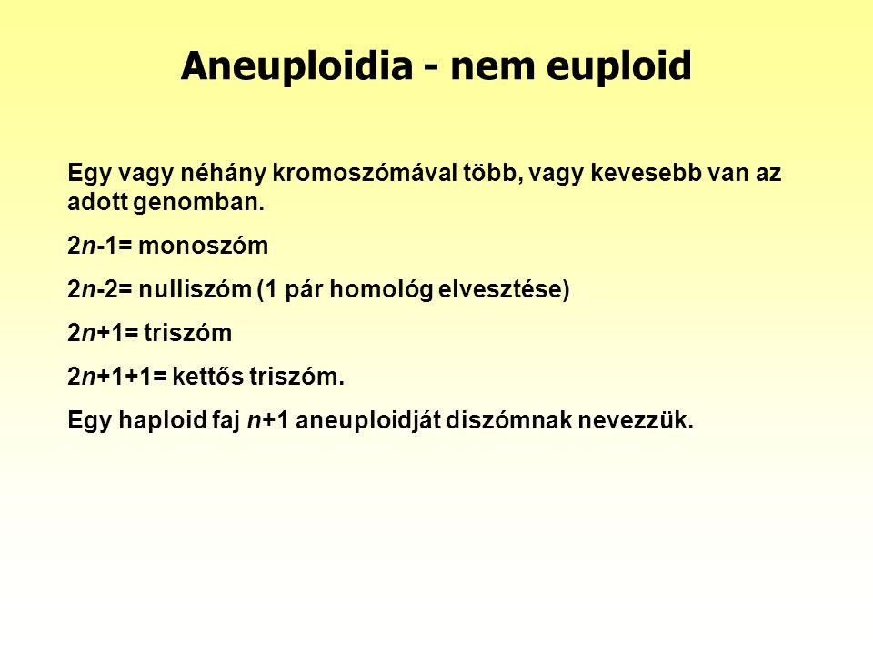 Aneuploidia - nem euploid