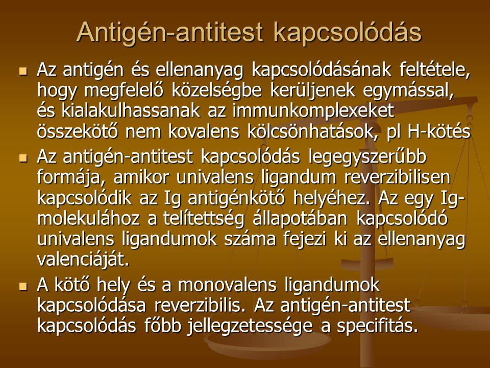 Antigén-antitest kapcsolódás