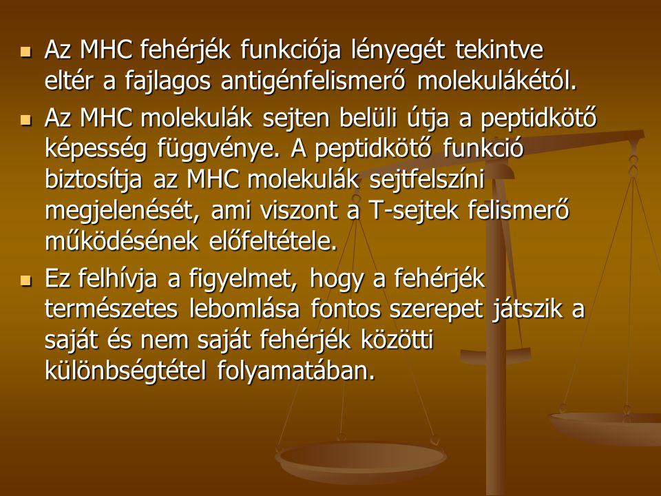 Az MHC fehérjék funkciója lényegét tekintve eltér a fajlagos antigénfelismerő molekulákétól.