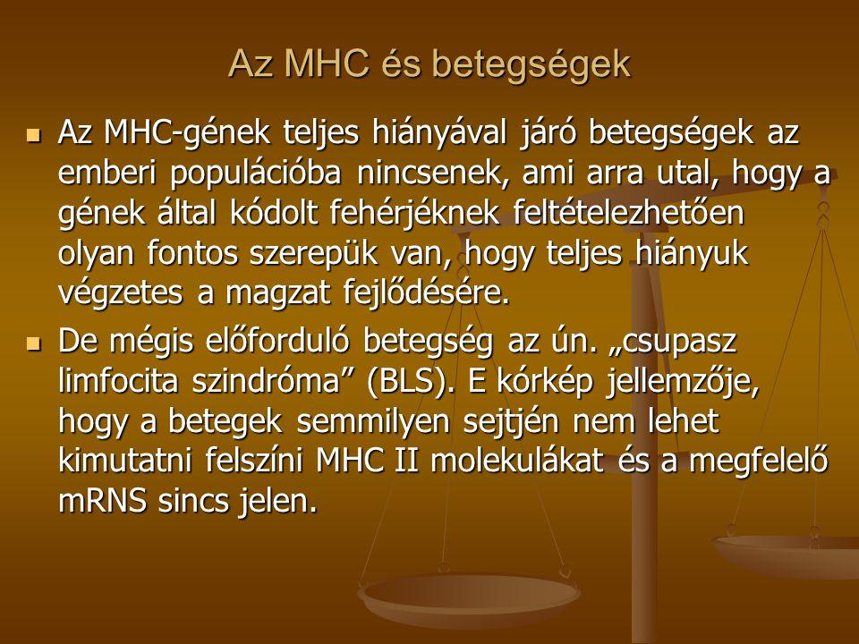 Az MHC és betegségek