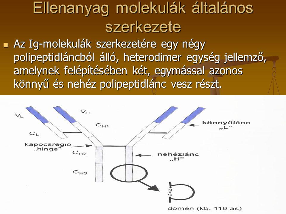 Ellenanyag molekulák általános szerkezete