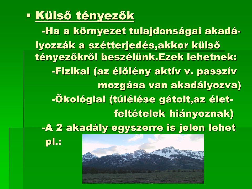 Külső tényezők -Ha a környezet tulajdonságai akadá-