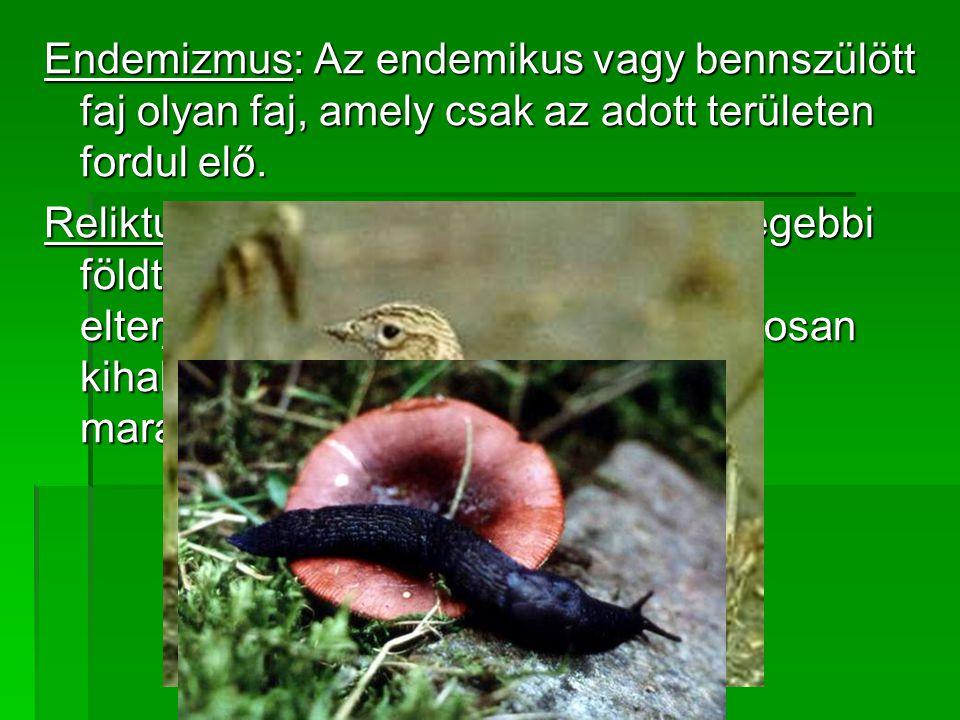 Endemizmus: Az endemikus vagy bennszülött faj olyan faj, amely csak az adott területen fordul elő.