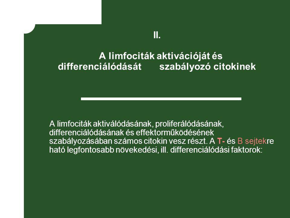 II. A limfociták aktivációját és differenciálódását szabályozó citokinek