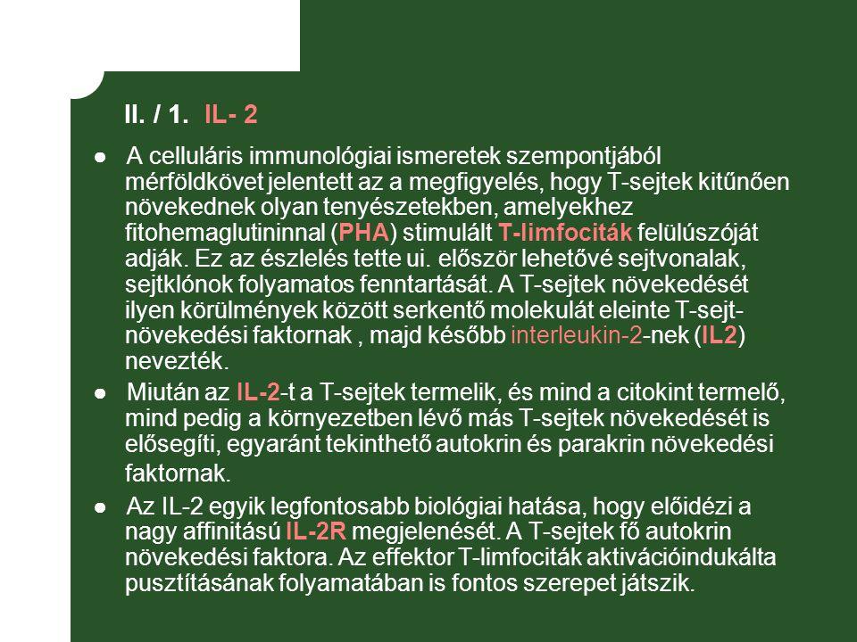 II. / 1. IL- 2