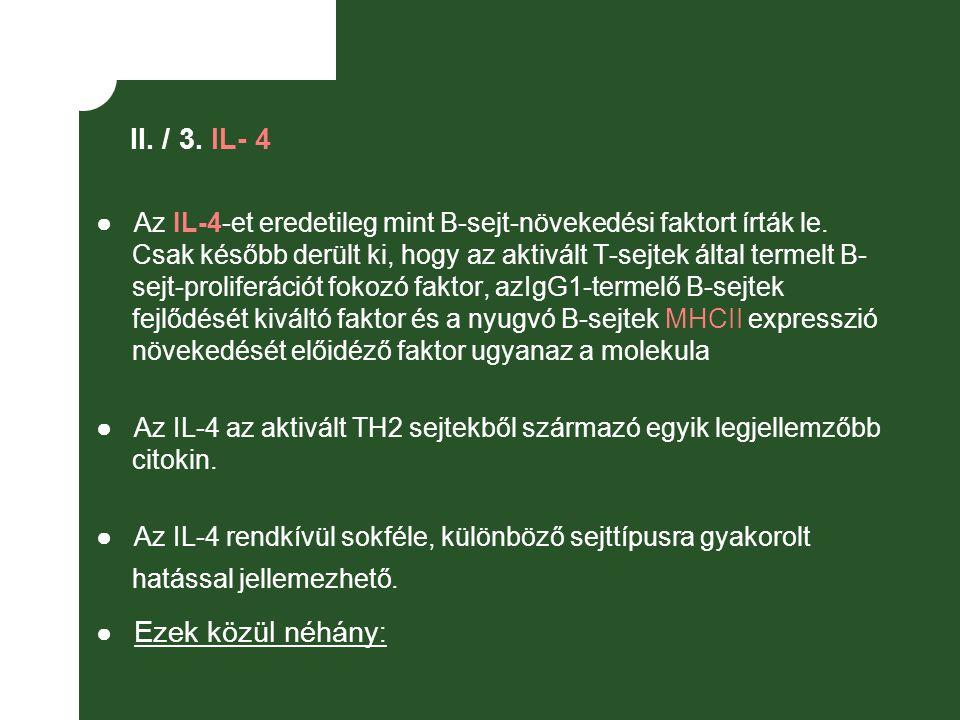 II. / 3. IL- 4