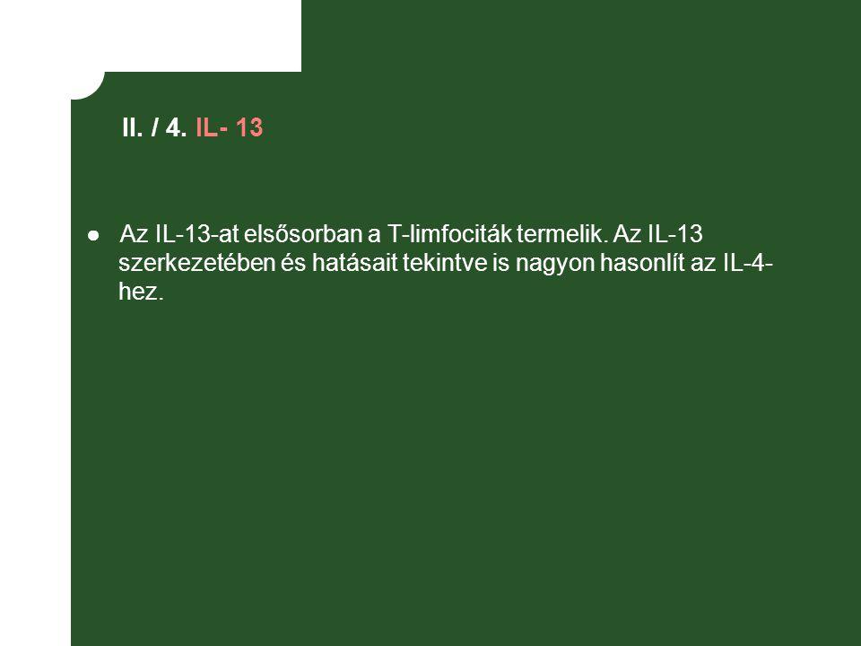 II. / 4. IL- 13 ● Az IL-13-at elsősorban a T-limfociták termelik.