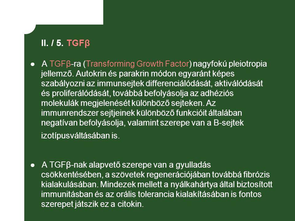 II. / 5. TGFβ
