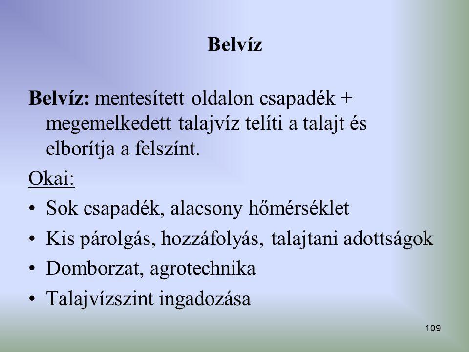 Belvíz Belvíz: mentesített oldalon csapadék + megemelkedett talajvíz telíti a talajt és elborítja a felszínt.