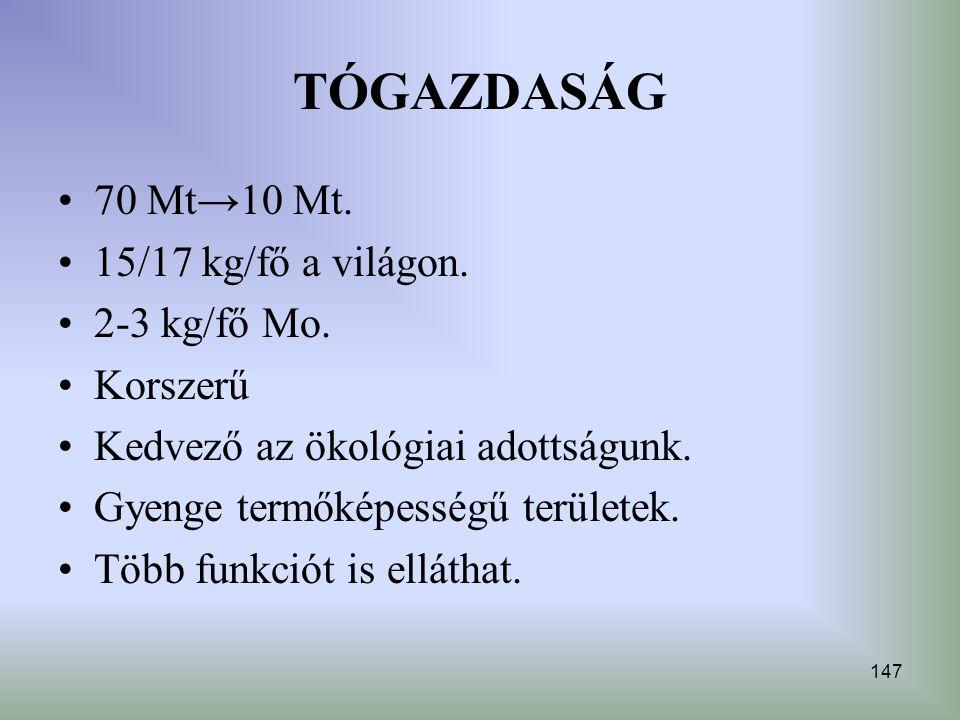 TÓGAZDASÁG 70 Mt→10 Mt. 15/17 kg/fő a világon. 2-3 kg/fő Mo. Korszerű