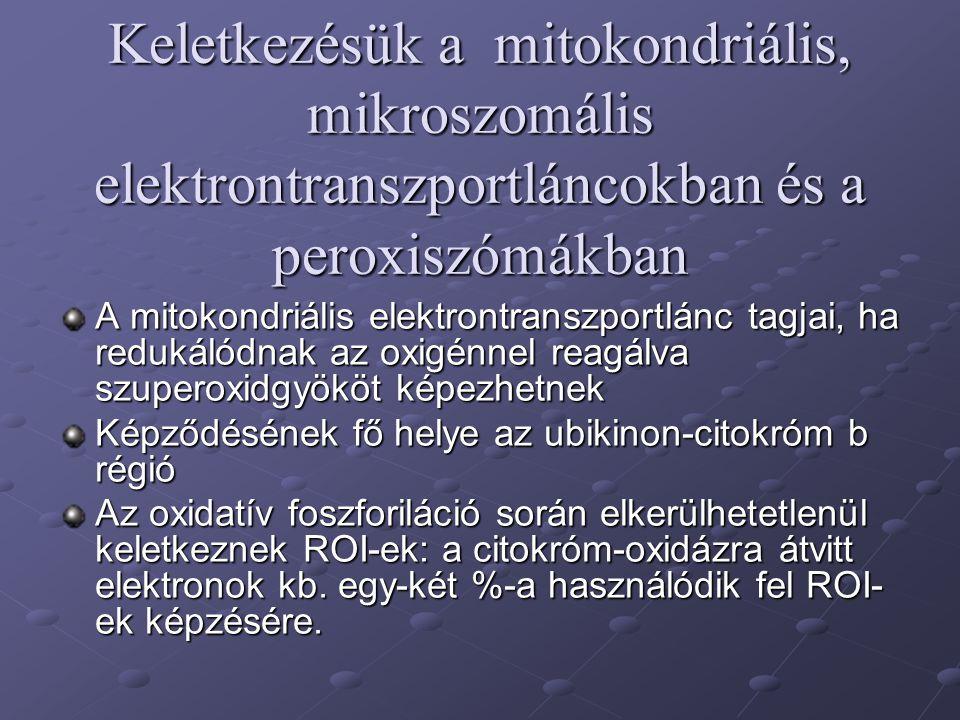 Keletkezésük a mitokondriális, mikroszomális elektrontranszportláncokban és a peroxiszómákban