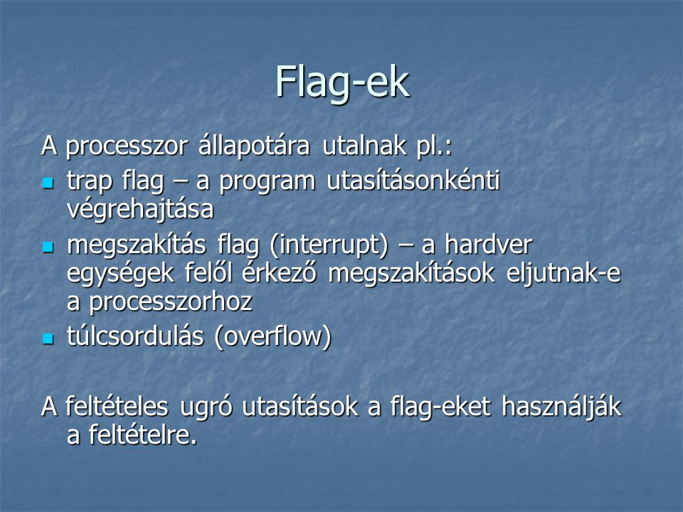 Flag-ek A processzor állapotára utalnak pl.:
