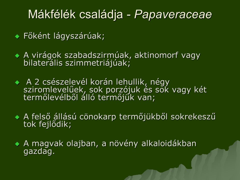 Mákfélék családja - Papaveraceae