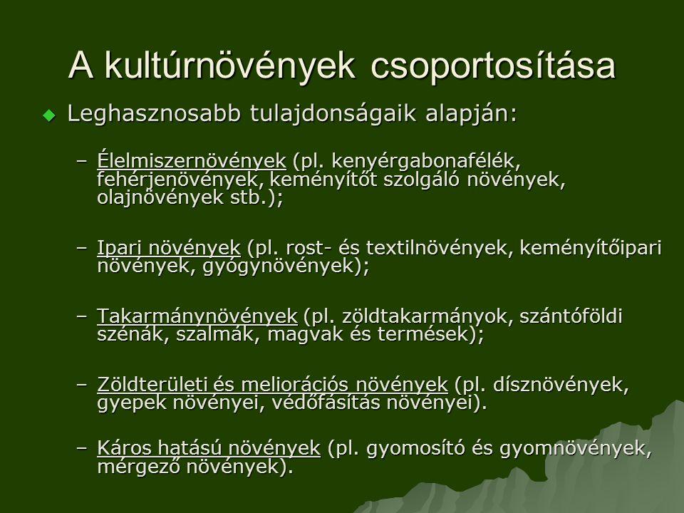 A kultúrnövények csoportosítása