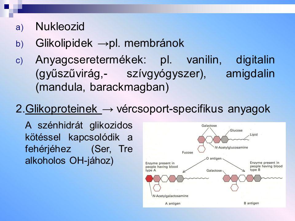 Glikolipidek →pl. membránok