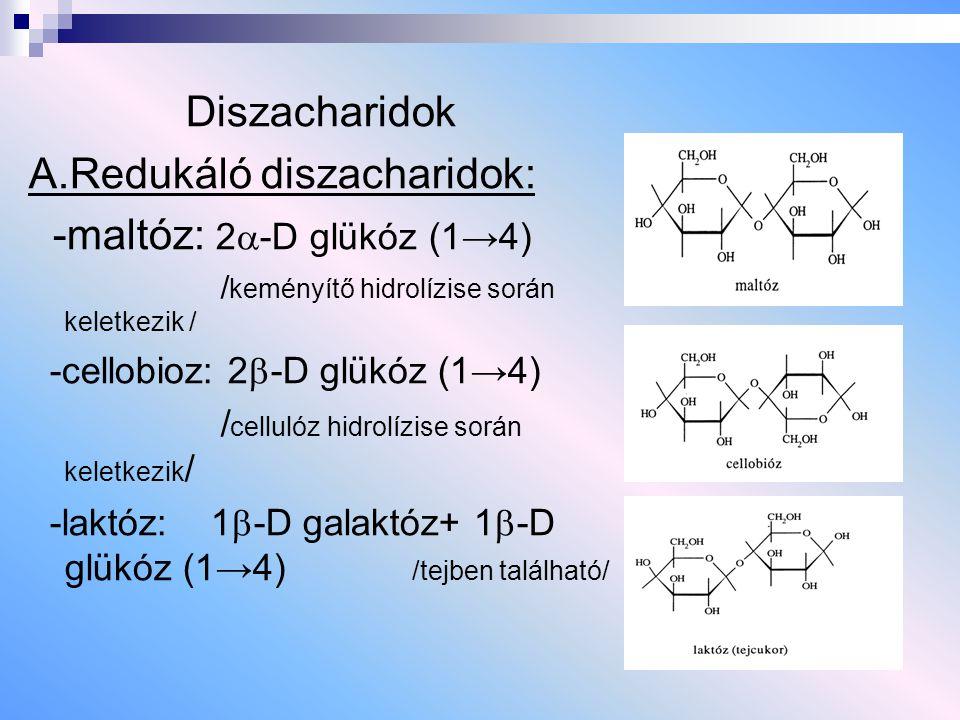 A.Redukáló diszacharidok: -maltóz: 2-D glükóz (1→4)