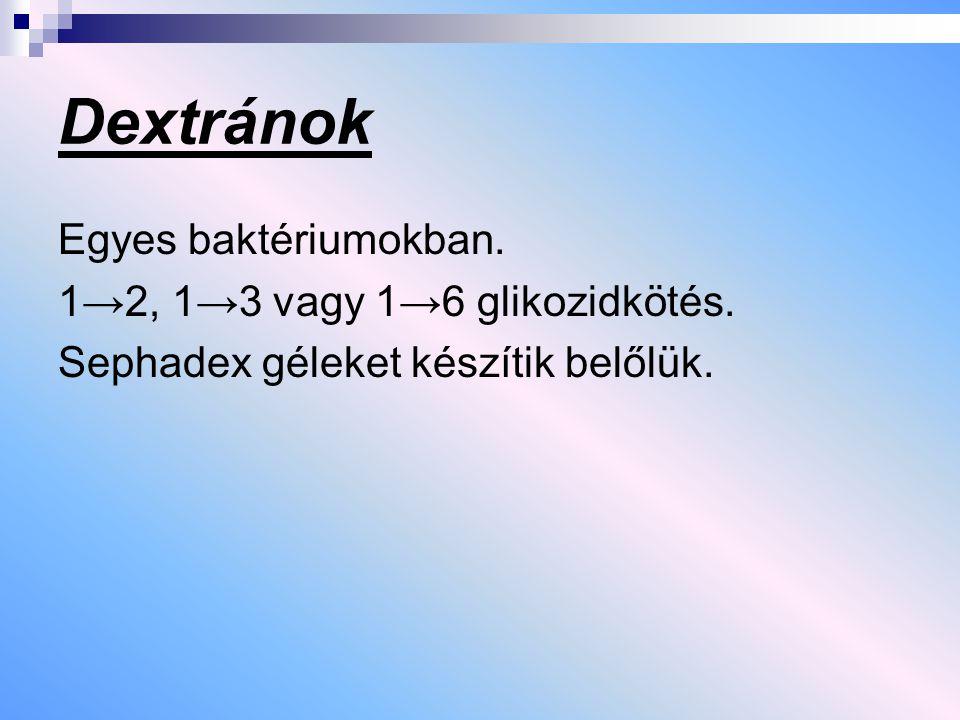 Dextránok Egyes baktériumokban. 1→2, 1→3 vagy 1→6 glikozidkötés.