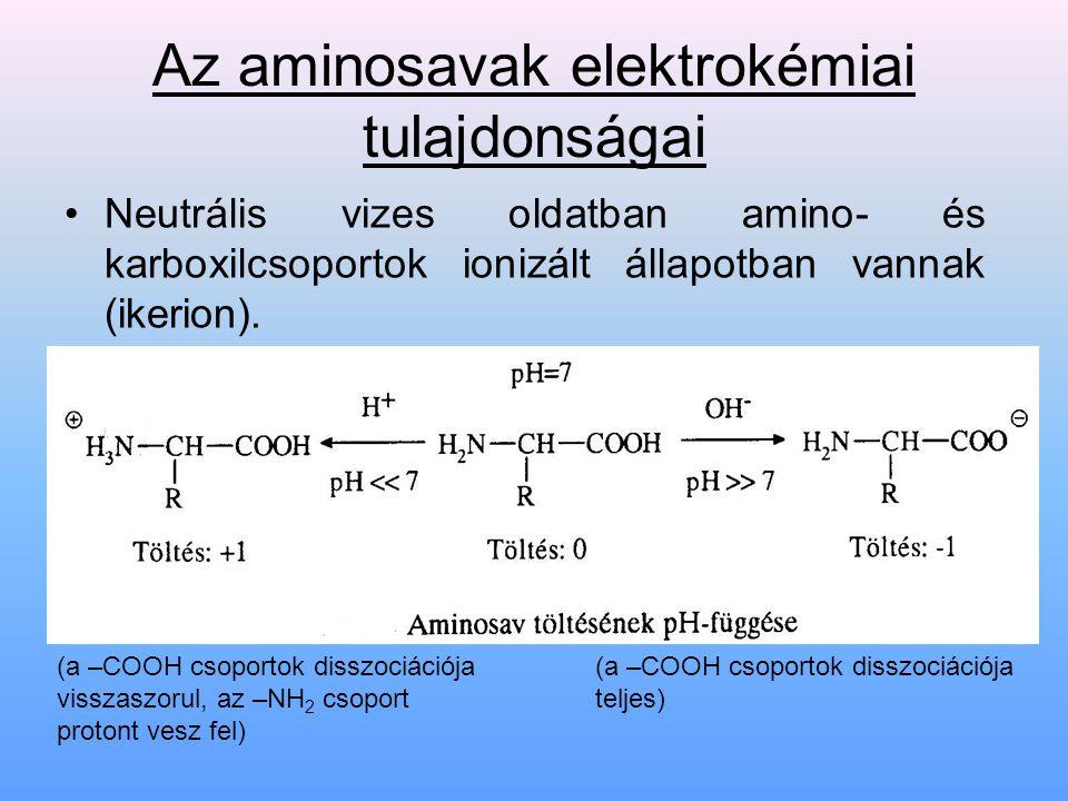 Az aminosavak elektrokémiai tulajdonságai